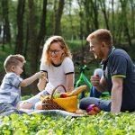Family Summer Picnic